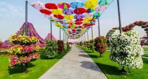 أين_تقع_الحديقة_المعجزة_في_دبي