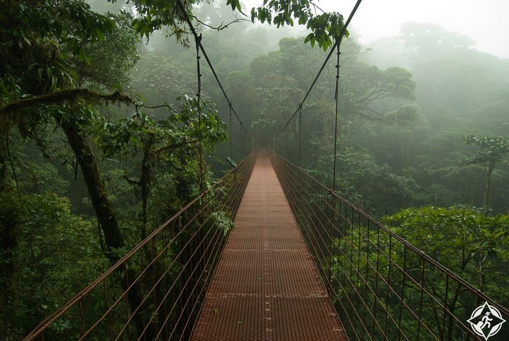 السياحة-في-كوستاريكا-غابة-مونتيفيردي